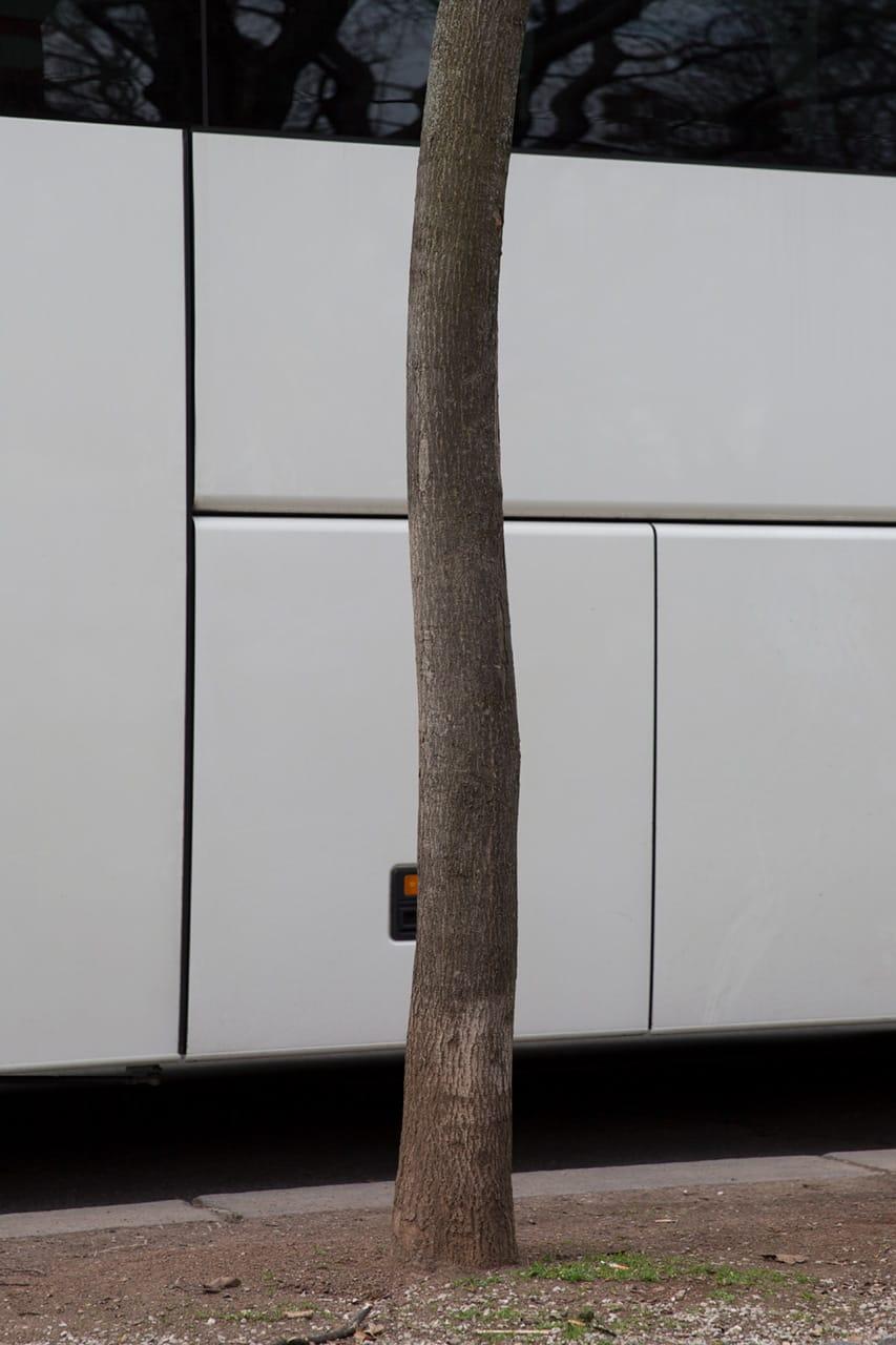 Baum und Bus, by Julian Mullan